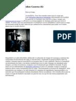 Article   Caspa Remedios Caseros (6)