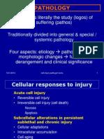 Cell Injury Apoptosis.
