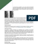 Pott Disease Emedicine