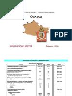 Información Laboral_Oaxaca-Feb'14 (STPS)
