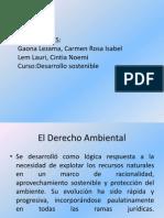 administracion desarrollo sustentable 2.pptx