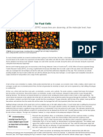 "A Nanoscale ""Tune-Up"" for Fuel Cells _ U.S"
