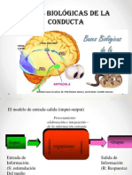 Bases Biologicas Del Comportamiento