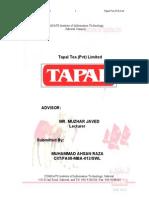 Final Internship Report on Tapal Tea (Pvt) Ltd.
