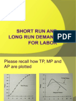 Short Run and Long Run Demand for Labor (1)