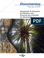 Germinacao de Sementes de Palmeiras Com Potencial Para Producao de Agroenergia