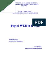 Lucrare de diploma - Pagini WEB in HTML