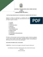 Pautas informe UNTECS