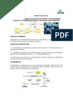 PRÁCTICA No 4 BQII PRODUCCIÓN DE PIRUVATO Y ACETALDEHÍDO