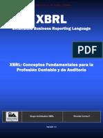 A7) XBRL Conceptos Fundamentales - IAIGC