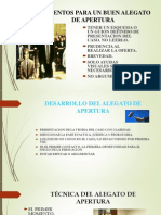ELEMENTOS PARA UN BUEN ALEGATO DE APERTURA.pptx