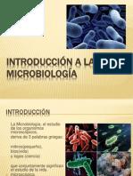 130496047-INTRODUCCION-A-LA-microbiologia.ppt