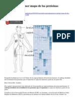 Preparan el primer mapa de las proteínas humanas-ok.docx