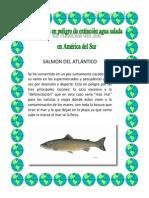 Imágenes de animales en extinción de agua salada de América del Sur.docx
