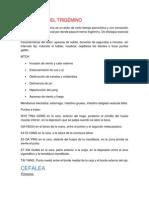 NEURALGIA DEL TRIGÉMINO.pdf