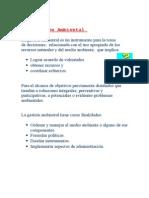 De los Instrumentos de Gestión Ambiental.doc