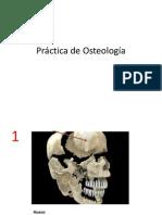 Practica_de_Osteologia resuelta.pptx