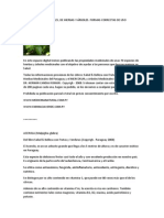 PROPIEDADES MEDICINALES - plantas del Paraguay.docx