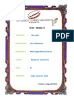 EDUACION PZICOMOTRIZ.docx