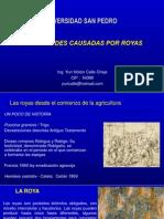 Fitopatologia  La Roya  Puccinia .pptx