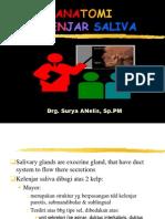 Anatmi kelenjar saliva drg.SuryaNelis Sp.PM.pptx