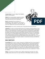137025967-Avocado.pdf