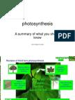 photosynthesis summary powerpoint.ppt
