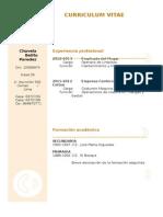 curriculum-vitae-modelo3a-arena.doc
