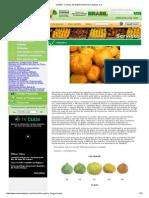 CEASA - Centrais de Abastecimento de Campinas S.pdf