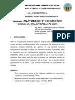 GEOPROCESAMIENTO BASICO DE IMAGEN SATELITAL ENVI.pdf