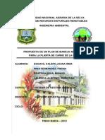 PLAN DE MANEJO AMBIENTA  FIRME.docx