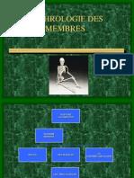 cours_n4-5_-_arthrologie_des_membres.ppt