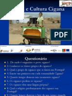 Formação história e cultura cigana.pdf