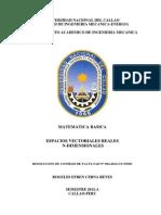 ESPACIOS VECTORIALES REALES-N DIMENSIONALES-2014.pdf