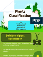 Kel 2 Plant Clasification