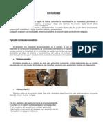 CUCHARONESs.pdf