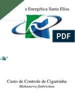 19- Valmir Barbosa-Cia Energetica S Elisa.pps