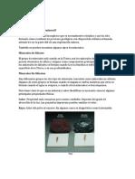 1°TRABAJO DE MINERALES 2.docx