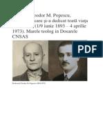 Martirul Teolog - Teodor M Popescu