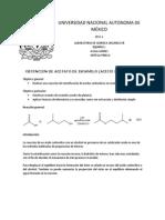 protocolo proyeto.docx