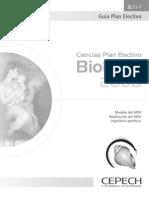 Guía BL11-1Electivo.pdf