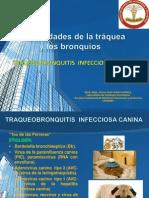 3 ENF TRAQUEA Y BRONQUIOS.ppt