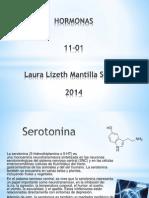 Adrenalina endorfina e serotonina