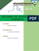 INFORME FINAL DE INVENTARIO.pdf