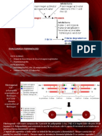 LP Fibrinoliza Si Trombofilie (1)