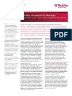 ds-vulnerability-manager (1).pdf