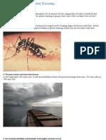5 Deadliest Effects of Global Warming