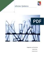 Informe Química.docx
