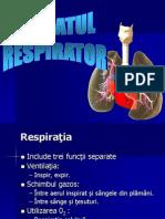 Respirator Curs New