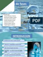 218317792-Diagrama-de-Fases.pdf